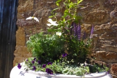 Haddonstone summer purple