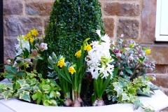 Haddonstone white spring 2