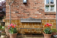 YTH Tulips and bench